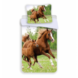 Horse 04