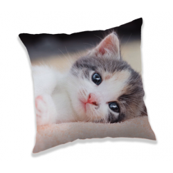 Kitten poduszka