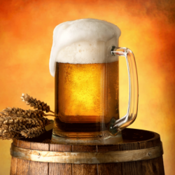 Beer poduszka cover