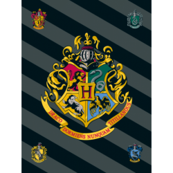 Harry Potter HP067  koc fleece